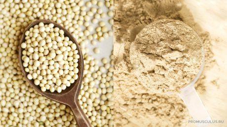 Соевый протеин как альтернатива сывороточному