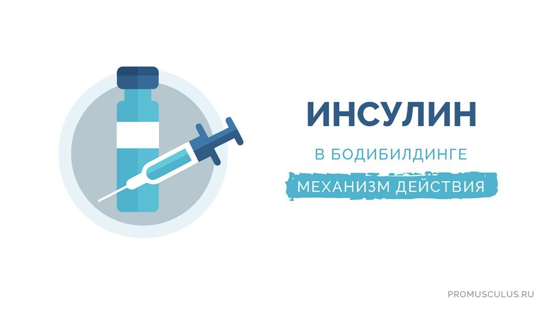 Механизм действия инсулина в бодибилдинге для набора мышечной массы и похудения
