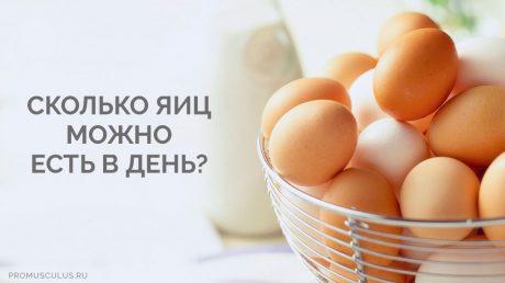 Холестерин в куриных яйцах: сколько яиц можно есть в день взрослому человеку?